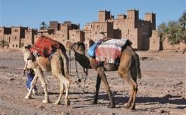 Okruh Marockým královstvím mezi Saharou, Atlasem a Atlantikem -
