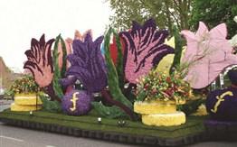 Holandsko - s květinovým korzem a ubytováním v Amsterdamu -