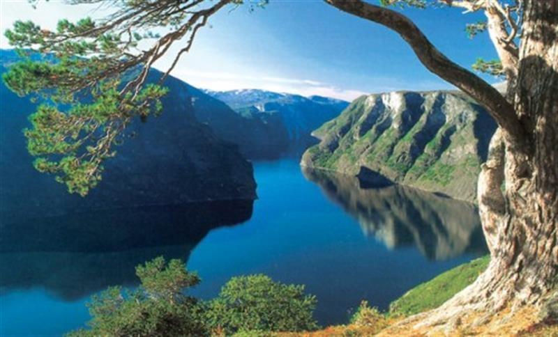 Skandinávie -